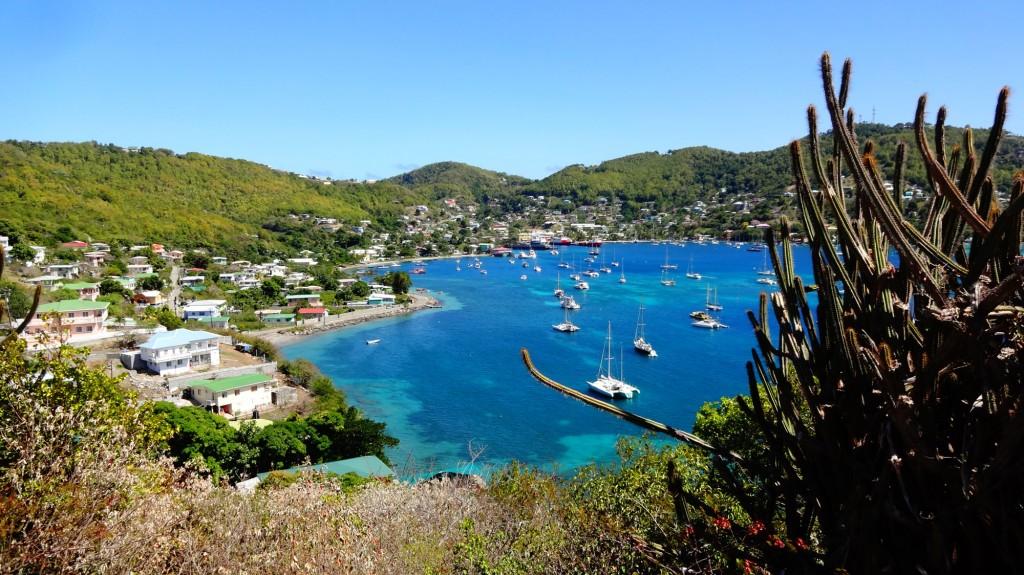 Partez depuis la Martinique pour une croisière voile et plongée avec skipper aux Grenadines. Piwi vous embarque découvrir l'archipel à bord de son catamaran.