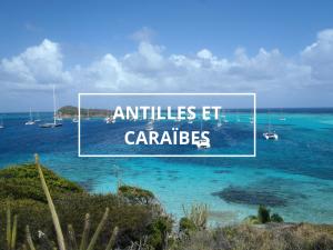 croisiere catamaran antilles caraibes