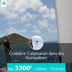 Miniature de l'offre de croisière Skippair en catamaran avec Fabien aux Grenadines
