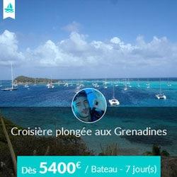 Miniature de l'offre de croisière plongée Skippair avec Pierre-Walter aux Grenadines