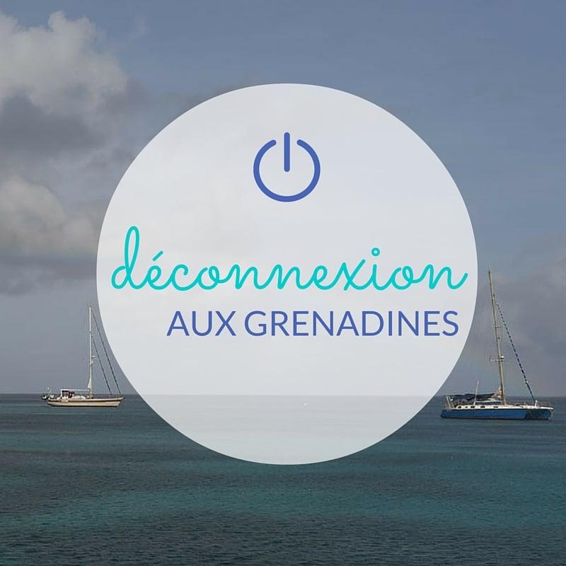 Une escale pour déconnecter en vacances : Chatham Bay, aux Grenadines - Skippair
