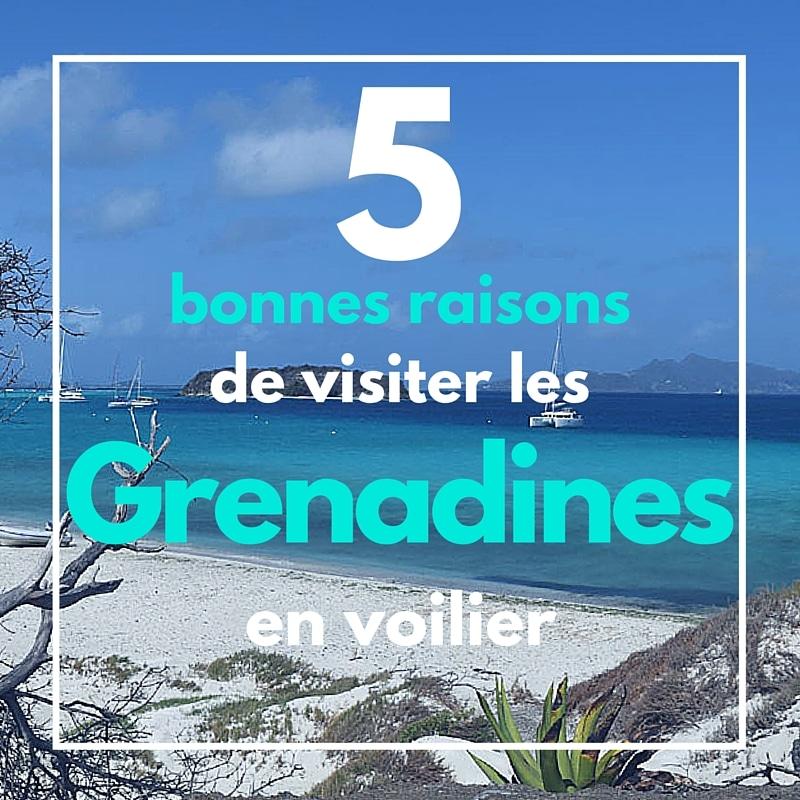 Cinq bonnes raisons de visiter les Grenadines en voilier avec Skippair