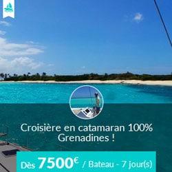 Miniature de l'offre de croisière Skippair en catamaran avec Stéphane aux Grenadines