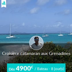Miniature de l'offre de croisière Skippair en catamaran avec Alain aux Grenadines