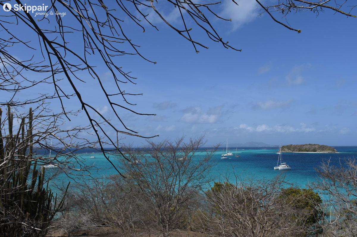 Voiliers au mouillage sur l'eau turquoise des Tobago Cays - Skippair