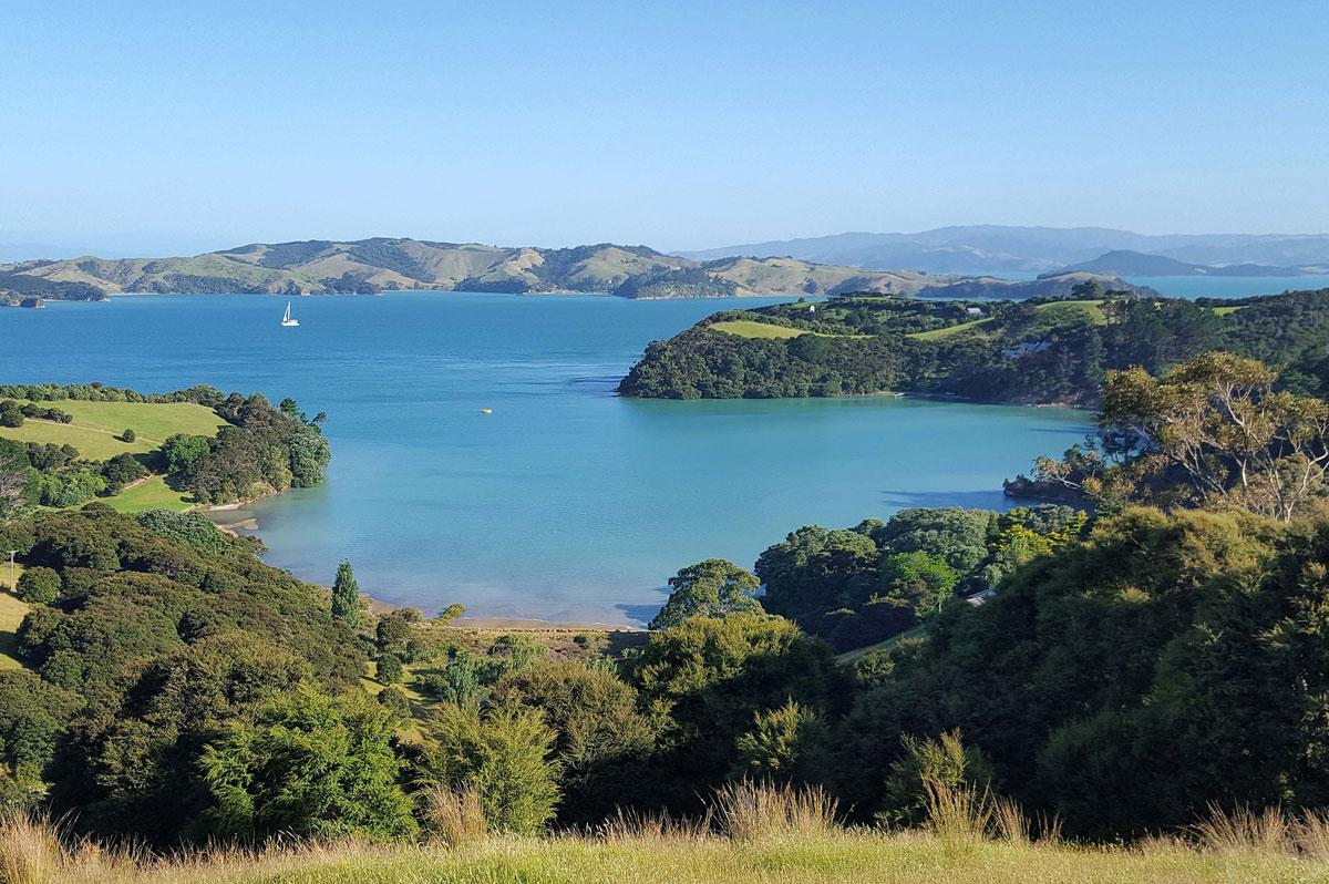 Paysage bucolique de Nouvelle-Zélande - CC0 (Pixabay)